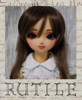 rutilepuro07 (527x640).jpg